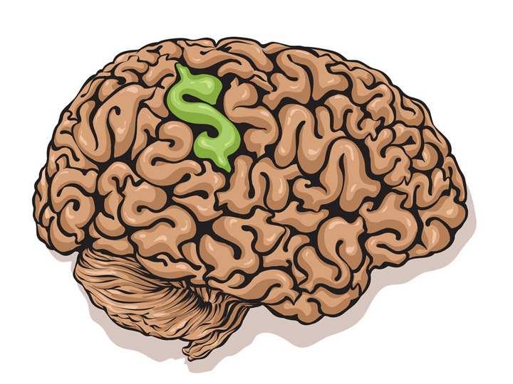 حسابداری در مغز